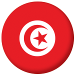 Tunisia Country Flag 25mm Keyring